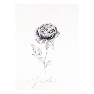 cartepostale-naissance-creation-eleonorem-trottecocotte