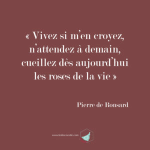 Pierre-de-Ronsard-lesrosesdelavie-trottecocotte